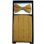 Antique Gold Cummerbund & Bow Tie Set